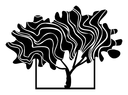 Web de Guguiarte